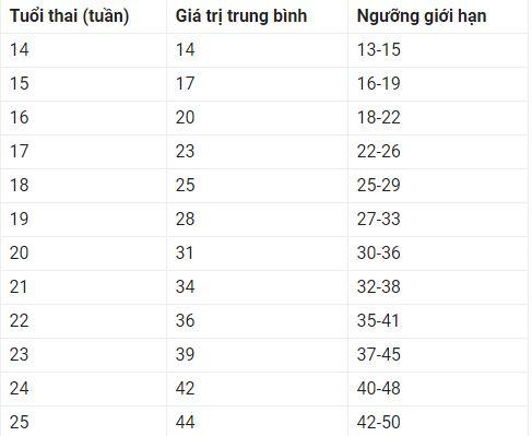 Chiều dài xương đùi chuẩn của thai nhi từ tuần 14-25