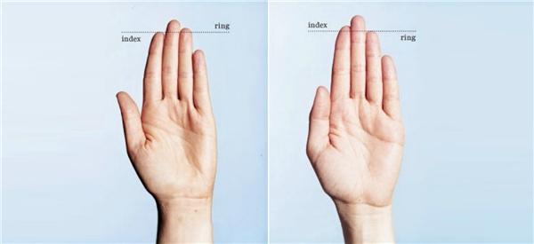 Ngón tay trỏ dài hơn ngón áp út