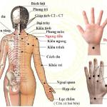 Bật mí các huyệt chữa đau vai gáy và cách thực hiện