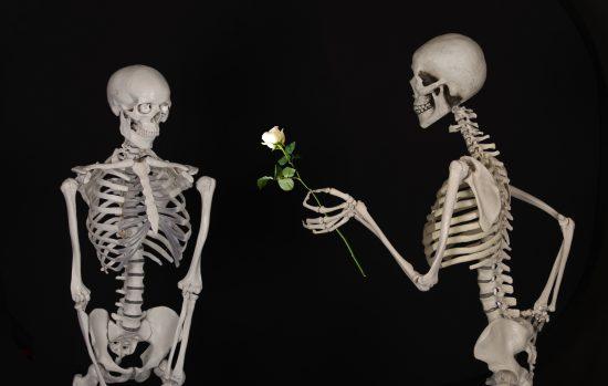 Một số thông tin thú vị về xương mọi người thường lầm tưởng