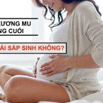 Thai 38 tuần đau xương mu là dấu hiệu sắp sinh con